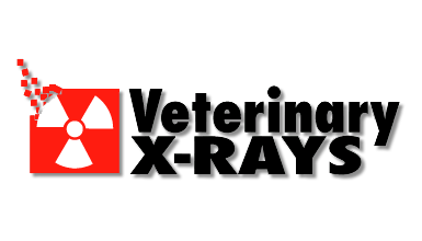 Veterinary X-Rays