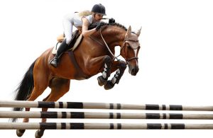 Woman showjumping