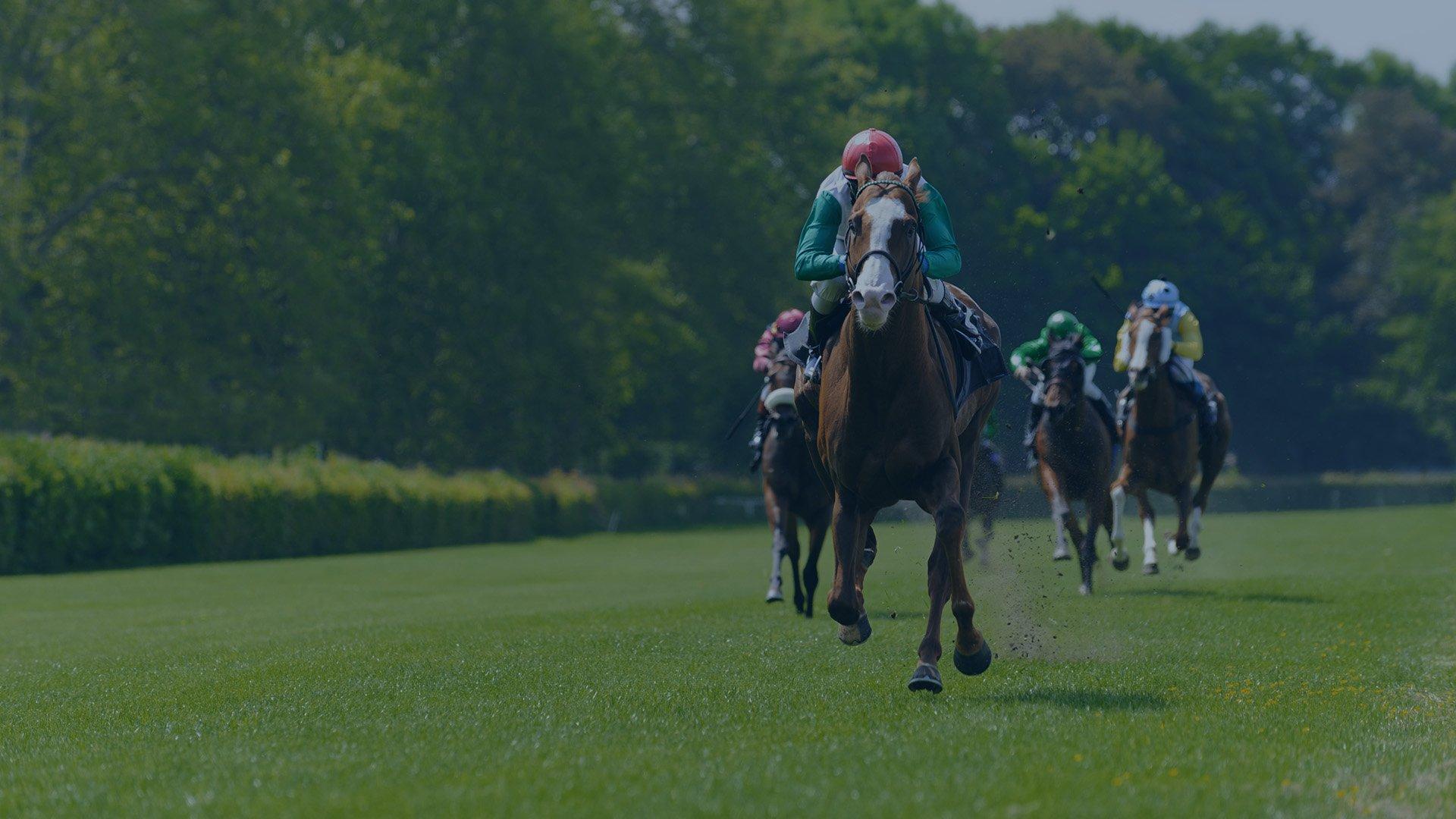 Jockey Winning Horse Race