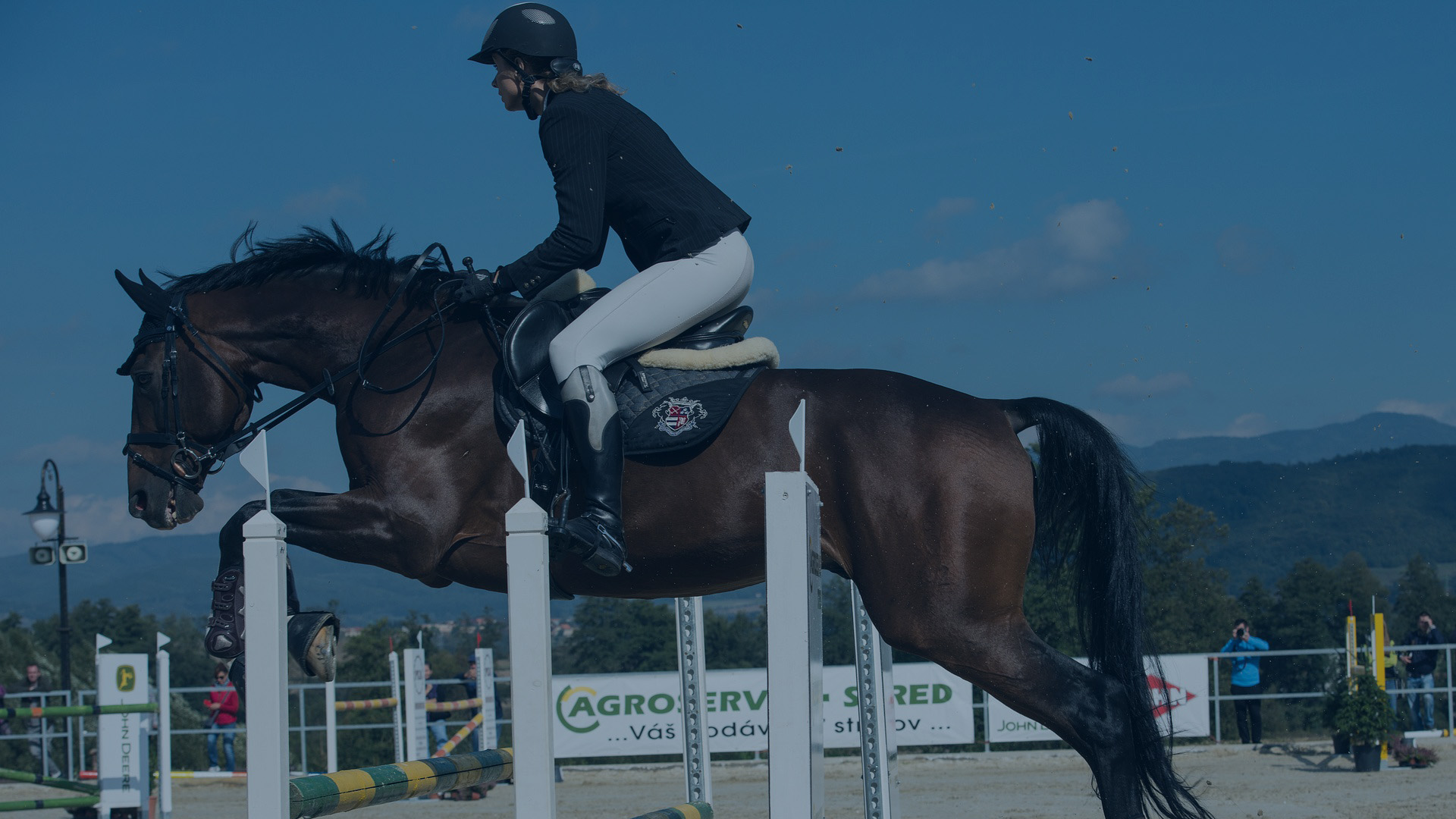 Horse Jumping Over Barrier